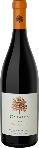 catalpa-pinot-noir